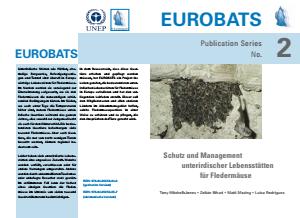Bild der Titelseite der Publikation: Arbeitshilfen zum Thema Fledermausschutz