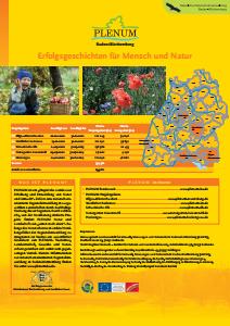 Bild der Titelseite der Publikation: Einführung PLENUM-Erfolgsgeschichten