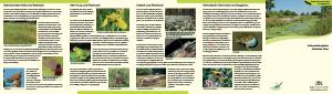 Bild der Titelseite der Publikation: Naturschutzgebiet Rastatter Ried
