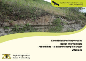 Bild der Titelseite der Publikation: Landesweiter Biotopverbund Baden-Württemberg Arbeitshilfe – Maßnahmenempfehlungen Offenland