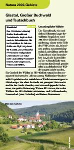 Bild der Titelseite der Publikation: Natura 2000 gemeinsam umsetzen - Glastal, Großer Buchwald und Tautschbuch