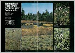 Bild der Titelseite der Publikation: Feuchtgebiete sind bedroht. Sie stehen unter Naturschutz