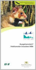 Bild der Titelseite der Publikation: Ausgehamstert? - Feldhamster brauchen Hilfe