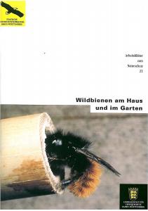 Bild der Titelseite der Publikation: Wildbienen am Haus und im Garten