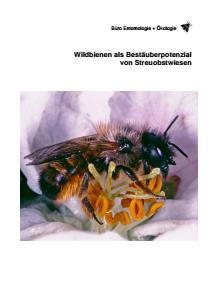 Bild der Titelseite der Publikation: Ermittlung der Wildbienenarten als Bestäuberpotenzial von Streuobstwiesen und Entwicklung eines speziellen Maßnahmenkonzepts zu ihrer dauerhaften Förderung