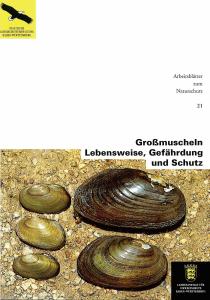 Bild der Titelseite der Publikation: Großmuscheln