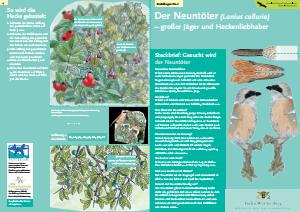 Bild der Titelseite der Publikation: Der Neuntöter