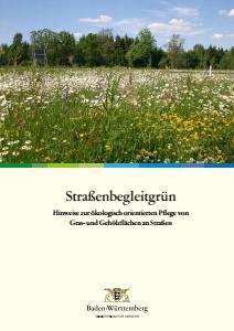 Bild der Titelseite der Publikation: Straßenbegleitgrün. Hinweise zur ökologischen Pflege von Gras und Gehölzflächen an Straßen.