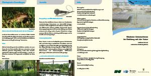 Bild der Titelseite der Publikation: Moderne Unternehmen im Einklang mit der Natur