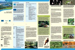 Bild der Titelseite der Publikation: Naturschutzgebiet Altrhein Kleiner Bodensee