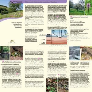 Bild der Titelseite der Publikation: Naturschutzgebiet Nüstenbachtal, Hessental und Masseldorn