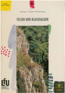 Bild der Titelseite der Publikation: Felsen und Blockhalden