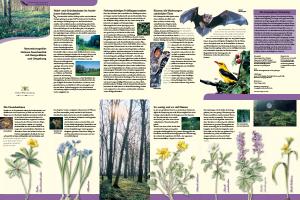 Bild der Titelseite der Publikation: Naturschutzgebiet Unteres Feuerbachtal mit Hangwäldern und Umgebung