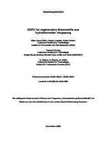Bild der Titelseite der Publikation: SOFC für regenerative Brennstoffe aus hydrothermaler Vergasung