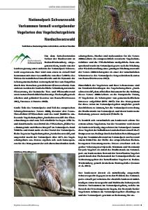 Bild der Titelseite der Publikation: Nationalpark Schwarzwald: Vorkommen formell wertgebender Vogelarten des Vogelschutzgebiets Nordschwarzwald
