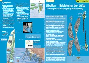 Bild der Titelseite der Publikation: Libellen - Edelsteine der Lüfte